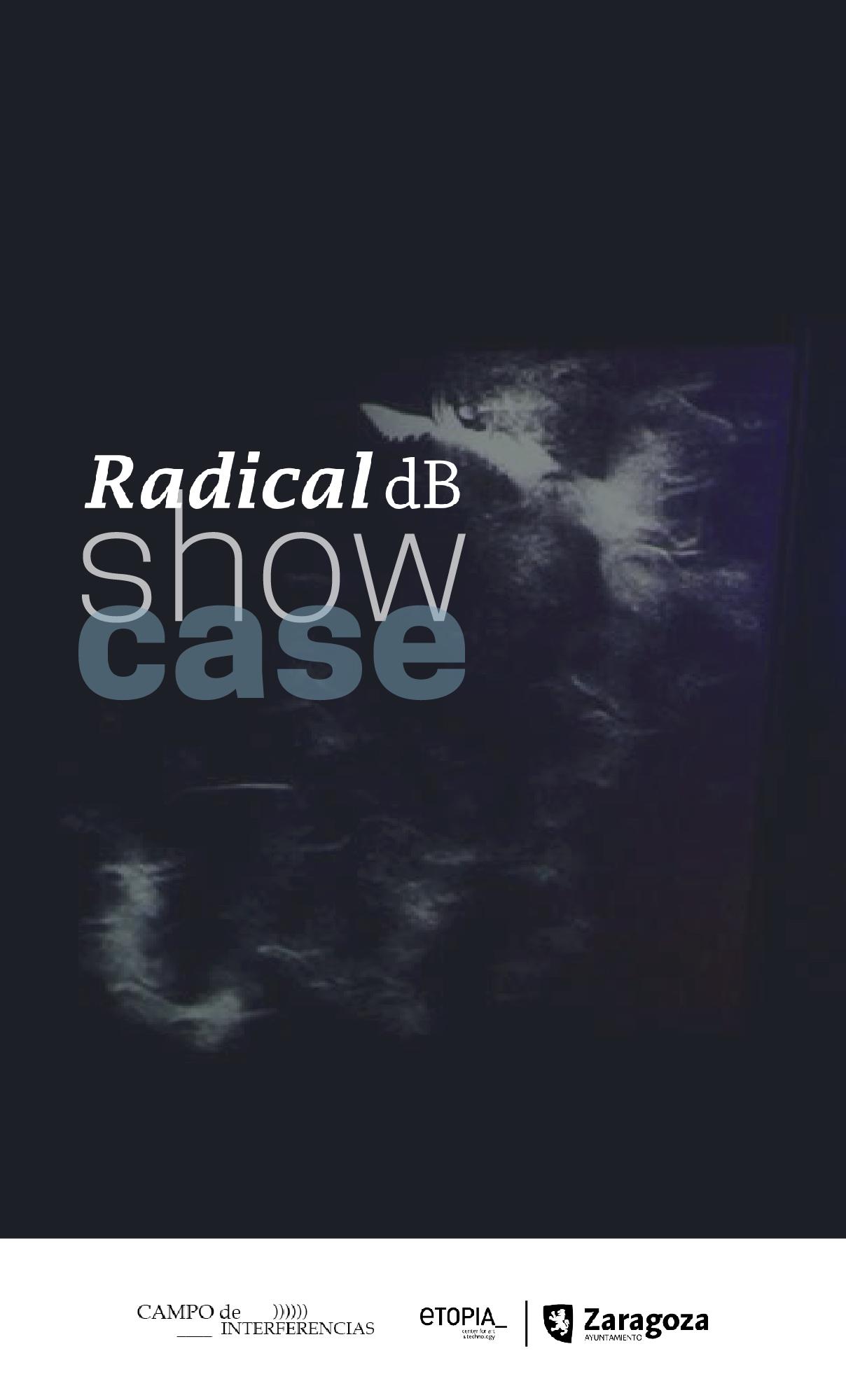 Radical dB Showcase 17-18 de febrero 2017